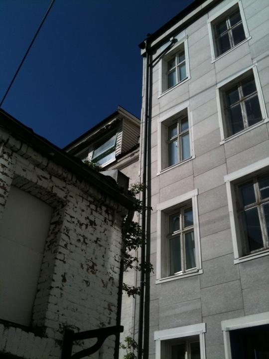 20110505-120300.jpg