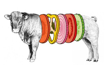burgersfoodillustrationpoliticalhamburgeranimal-9af918d21c83c0051daf2360d8e3b5b4_h